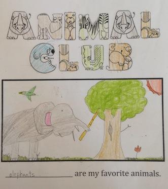 animal4